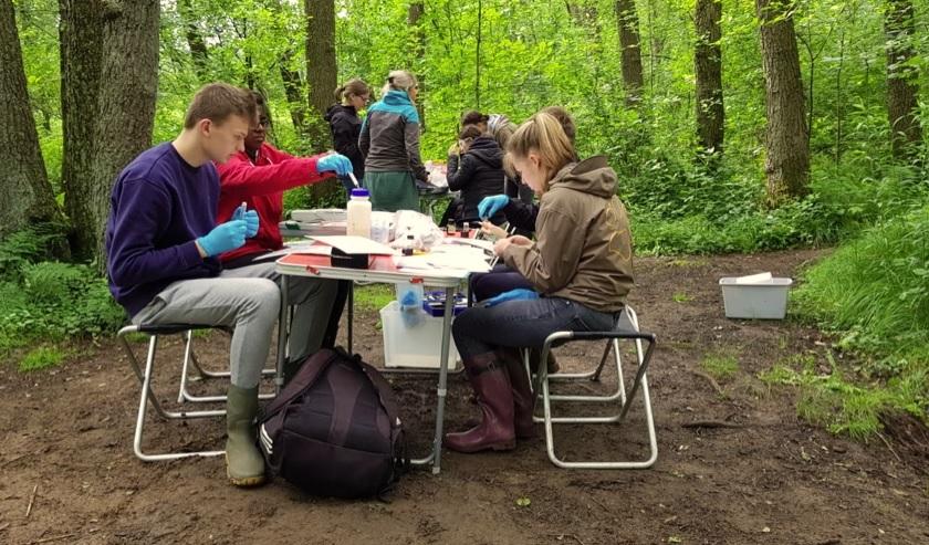 Schüler untersuchen den Schwarzbach