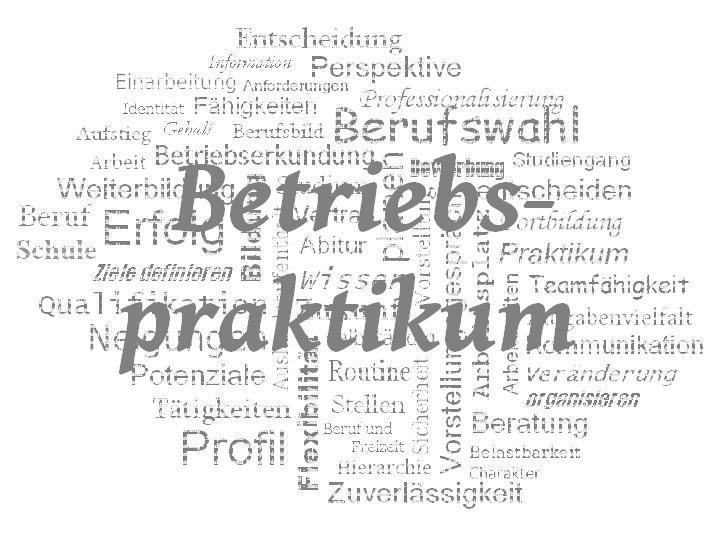 StuBo - WZ - Betriebspraktikum