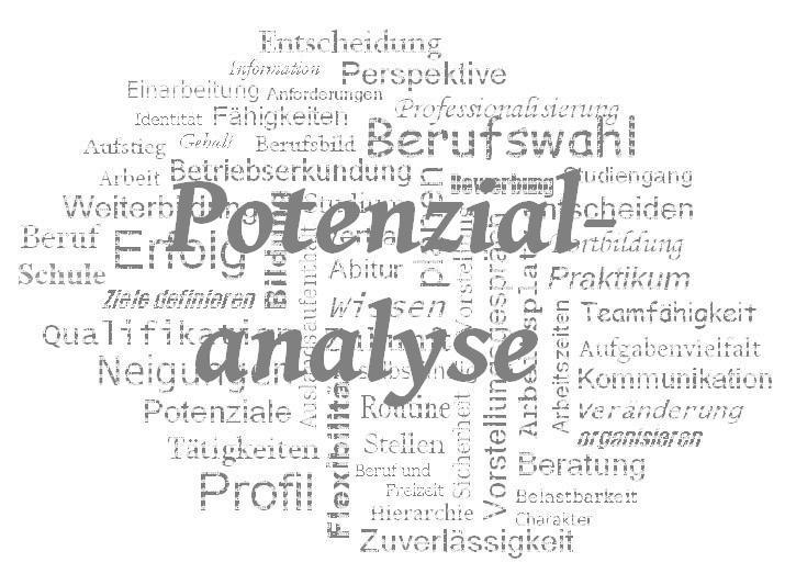 StuBo - WZ - Potenzialanalyse